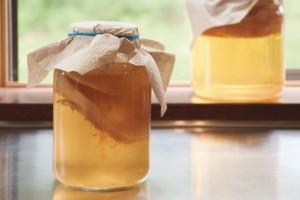 kombucha thé recette